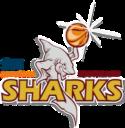 Southland Sharks Logo